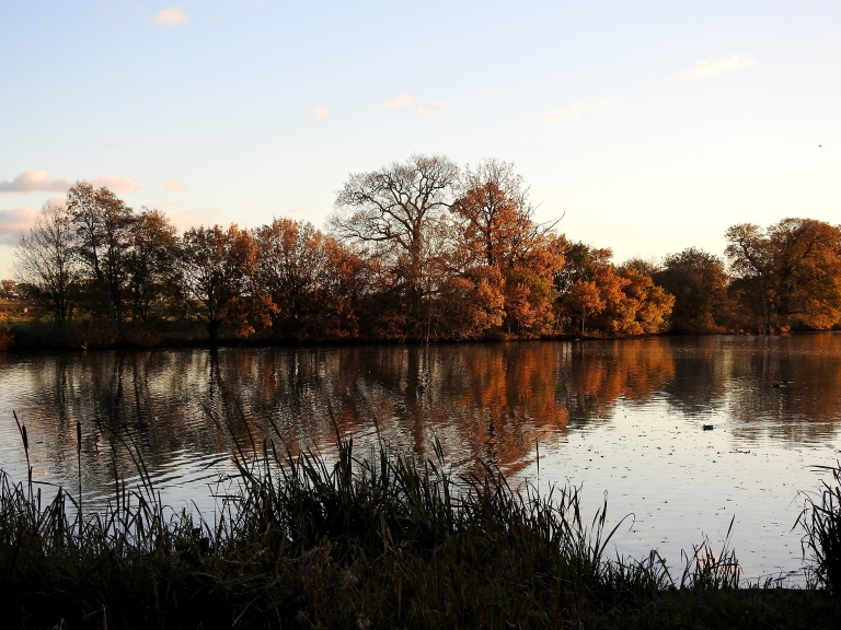 Coombe Abbey 2
